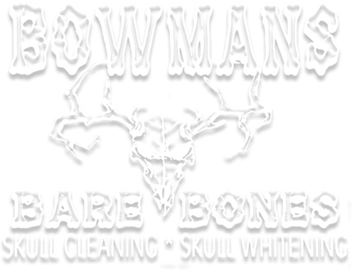 Bow Man's Bare Bones